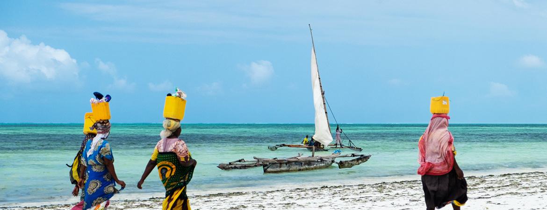 Zanzibar - Seaweeds